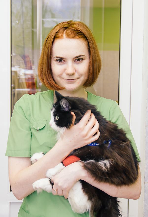 Колягина Дарья Дмитреевна - Ветеринарный врач-терапевт