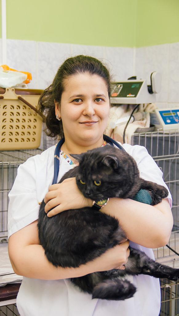 Андреева Ирина Вячеславовна - Ветеринарный врач-терапевт